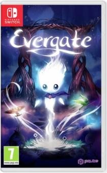 Evergate Nintendo Switch Box