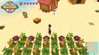 Harvest Moon: One World Beach