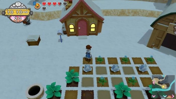 Harvest Moon: One World Winter Farm