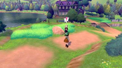 Pokémon Shield Scene 4